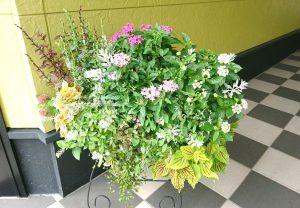 印西支店 飾り花籠